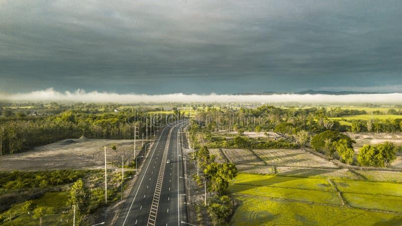 Droga przez zielonego świerkowego lasu z mglistym obraz stock