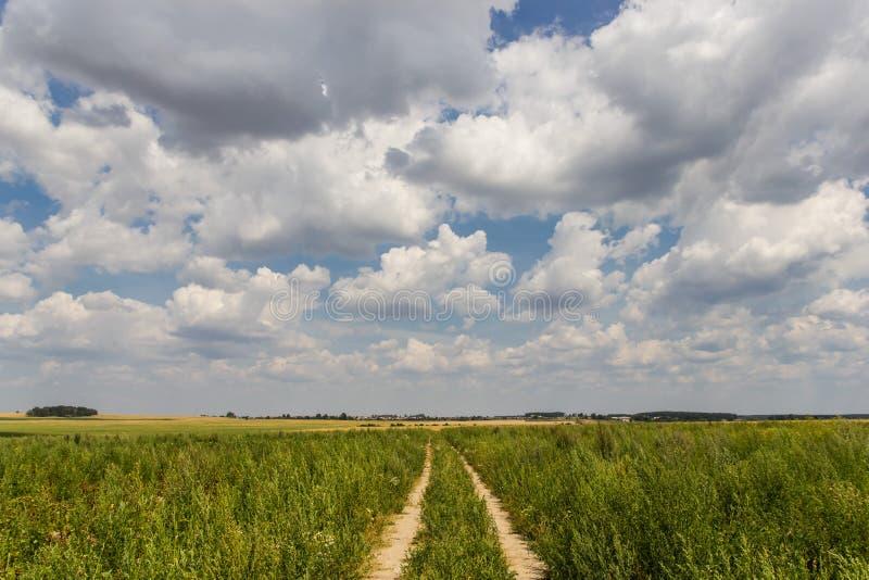 Droga przez zielonego pola pod chmurnym niebem obraz stock