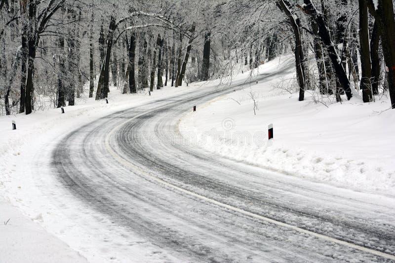 Droga w czołówce która obraca lodowego las, obraz royalty free