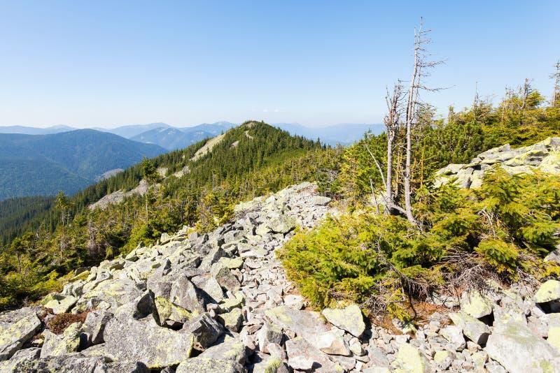 Droga w górach zdjęcie royalty free