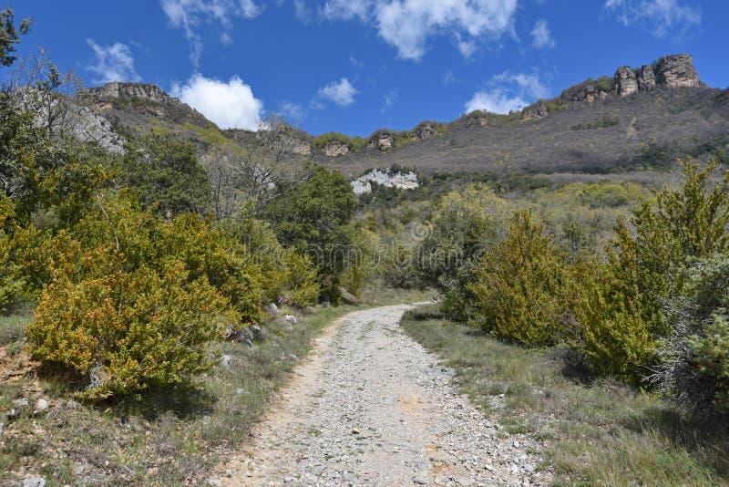 Droga w halnych otoczeniach monasterio De Leyre obrazy royalty free