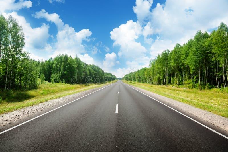 Droga w lesie obraz stock