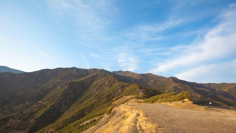 Droga w lesie letnim, morocco lanscape zdjęcie stock