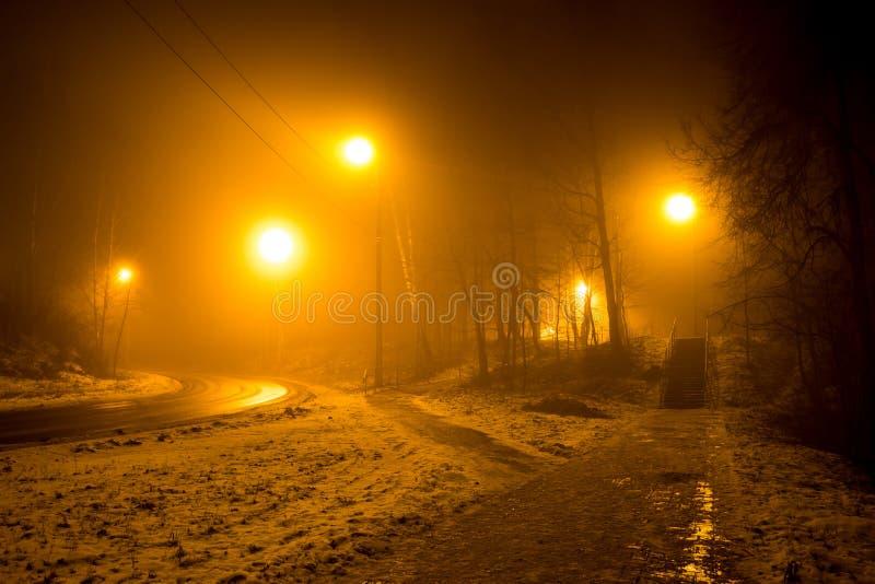 Droga w lesie podczas gęstej mgły zdjęcia stock