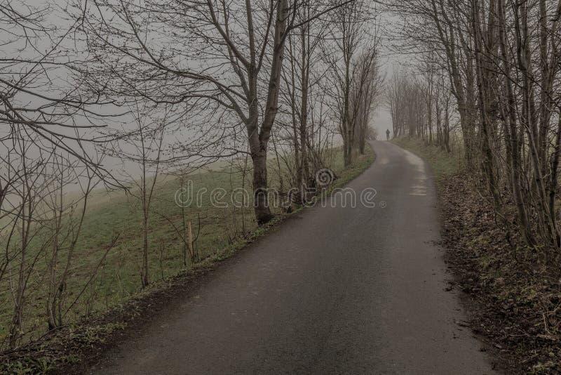 Droga w mgiełce zdjęcia stock