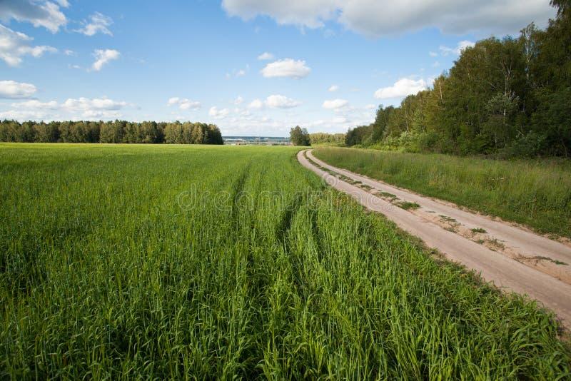 Droga w obszarze wiejskim obrazy royalty free