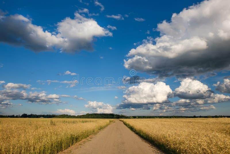 droga w polu pod pokrywami obraz stock