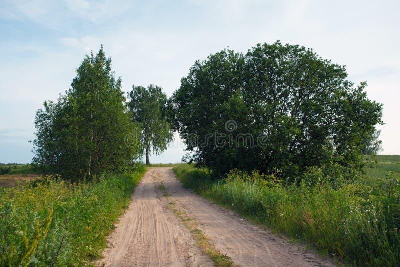 Droga w polu w wiosce obraz stock
