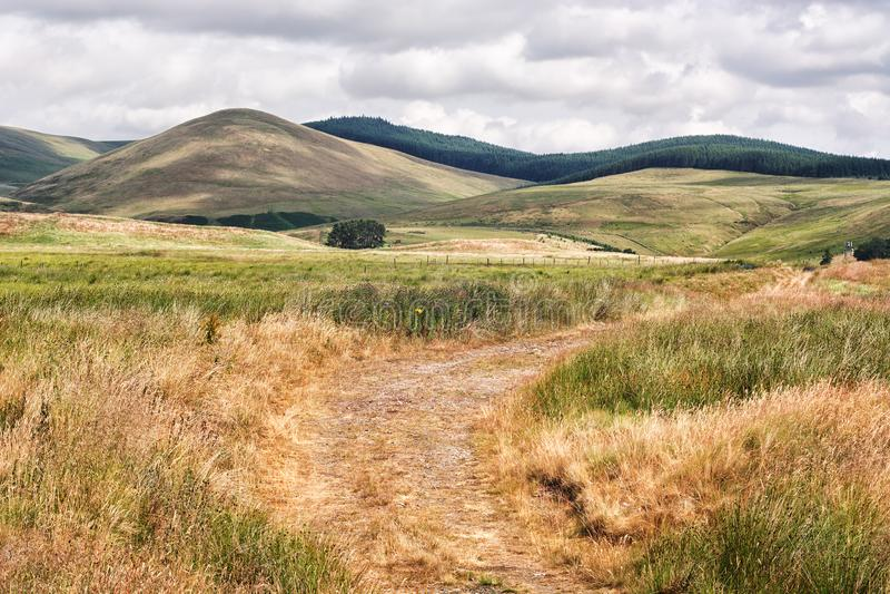 Droga w Szkockim zboczu, widok nad roztoką Devon obraz royalty free