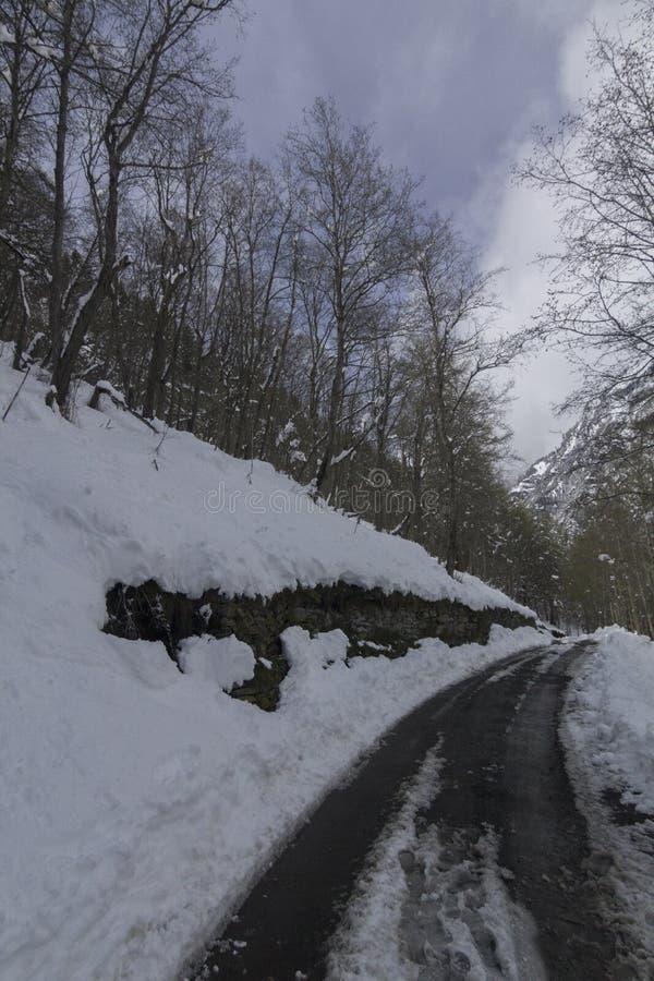 Droga w zima lesie w Switserland obraz stock