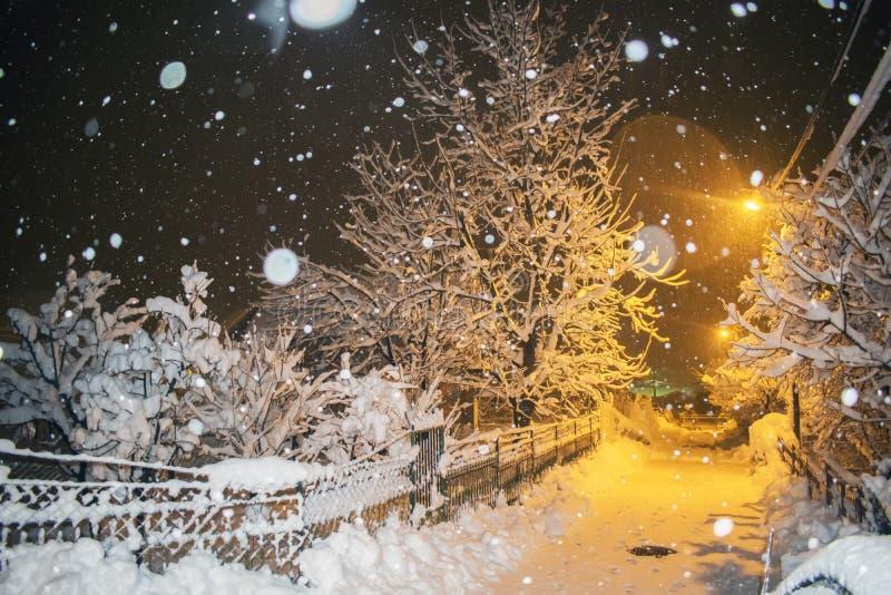 Droga w zimy nocy z żółtym światłem Ja ` s snowing zdjęcia stock