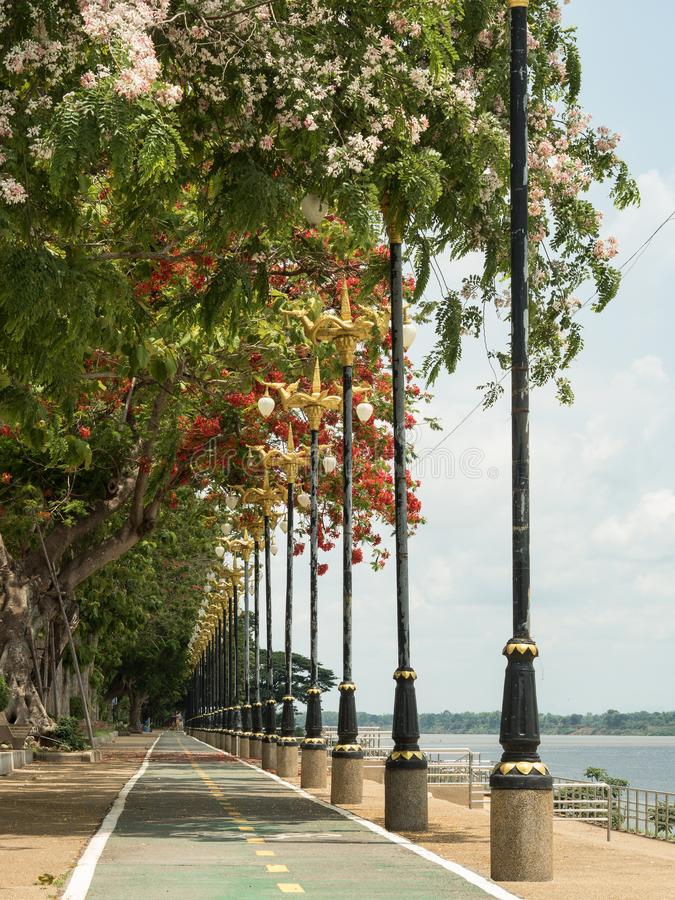Droga wzdłuż Mekong rzeki obraz stock