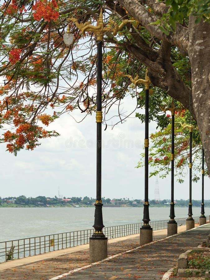 Droga wzdłuż Mekong rzeki obrazy stock