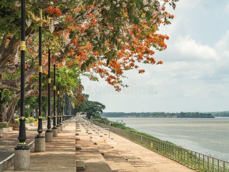 Droga wzdłuż Mekong rzeki zdjęcie royalty free