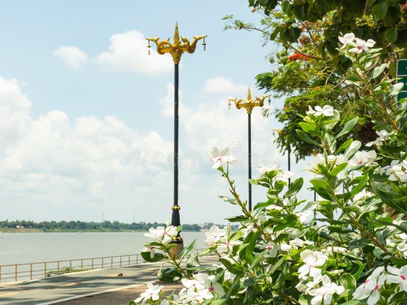Droga wzdłuż Mekong rzeki obrazy royalty free