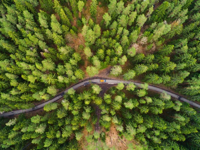 Droga z ciężarówką w lesie od above fotografia stock