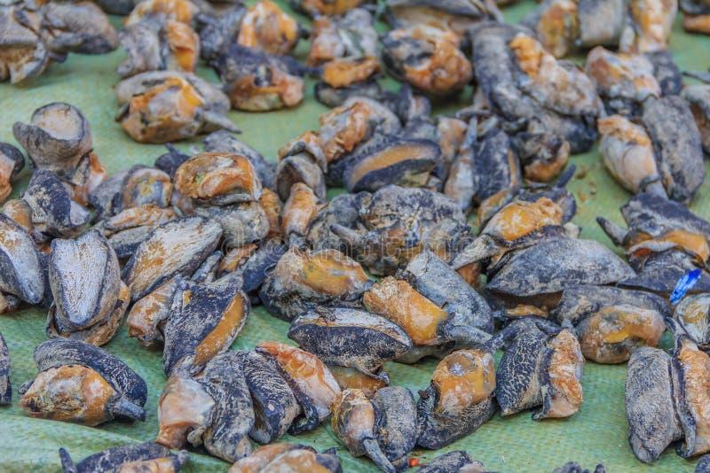Droge abalone voor verkoop stock foto