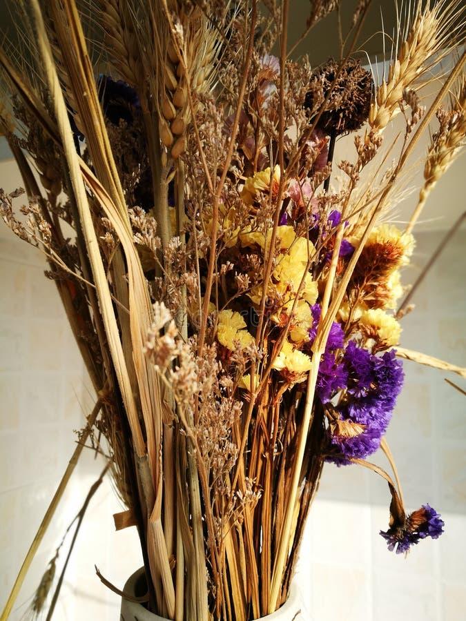 Droge bloemen die als ikebana worden geschikt royalty-vrije stock foto