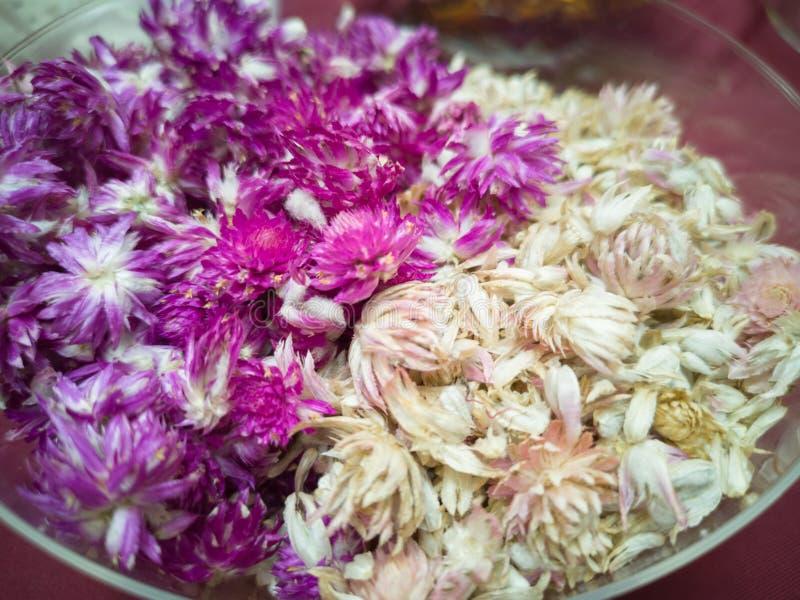 Droge Bolamarant, Droge bloesems voor aromatherapy, Welriekend mengsel van gedroogde bloemen en kruiden - beeld royalty-vrije stock afbeelding