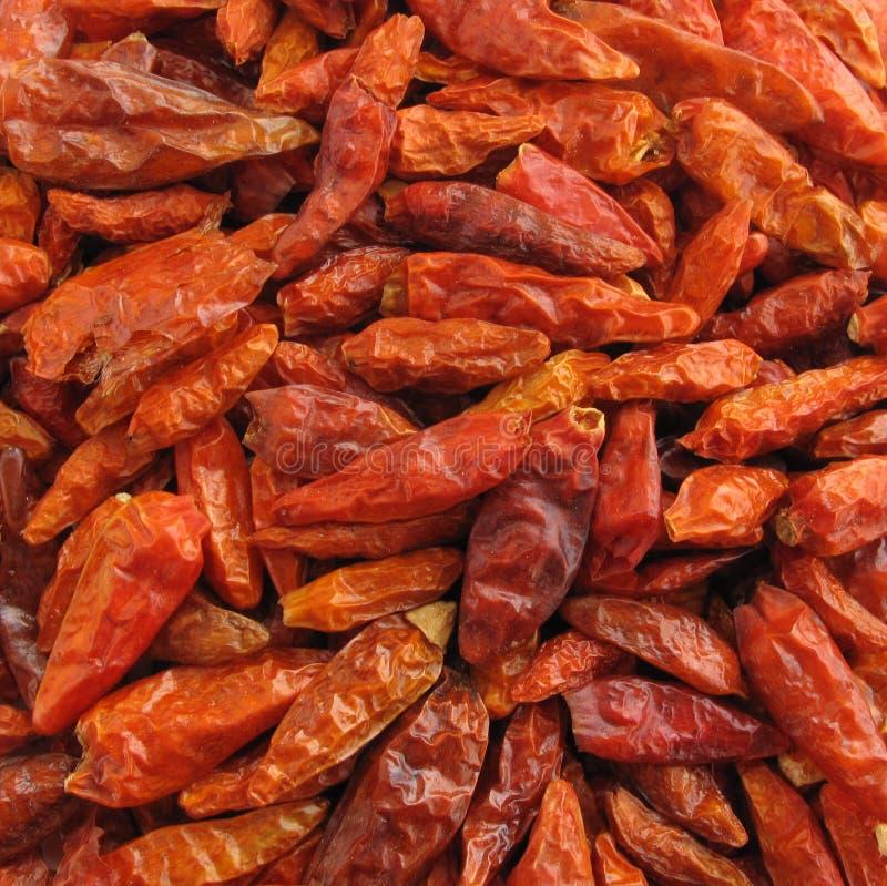 Droge de peperpaprika van de Spaanse peper royalty-vrije stock foto's