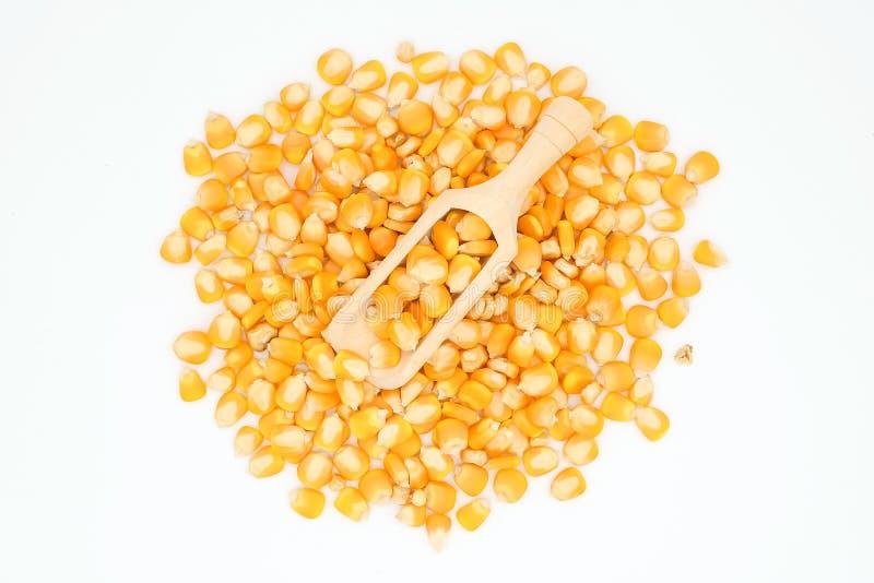 Droge die graanmaïs op de witte achtergrond wordt geïsoleerd stock afbeeldingen