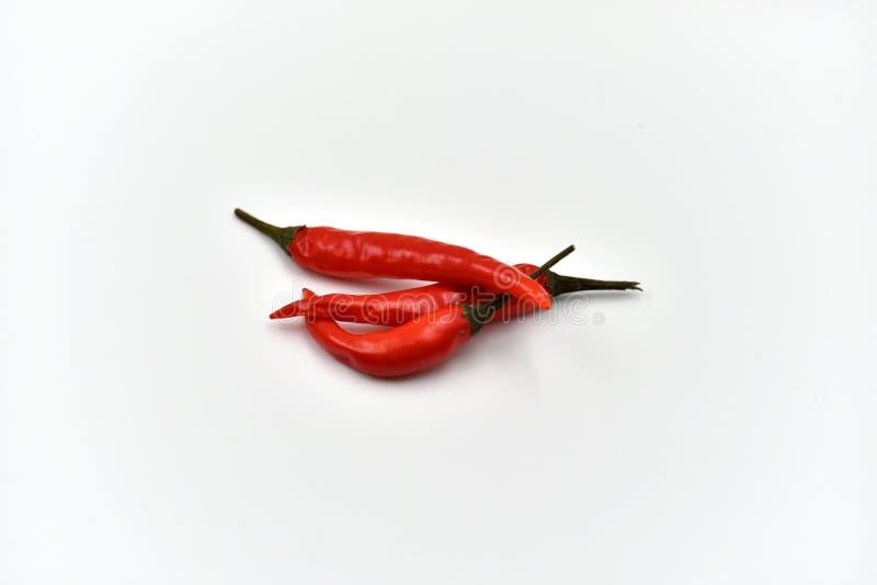 Droge Geïsoleerde Spaanse peperspeper stock foto