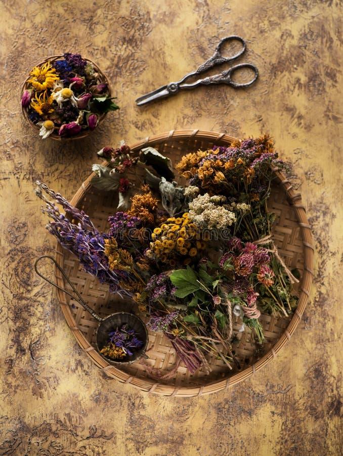 Droge geneeskrachtige kruiden en bloemen voor aftreksel stock foto