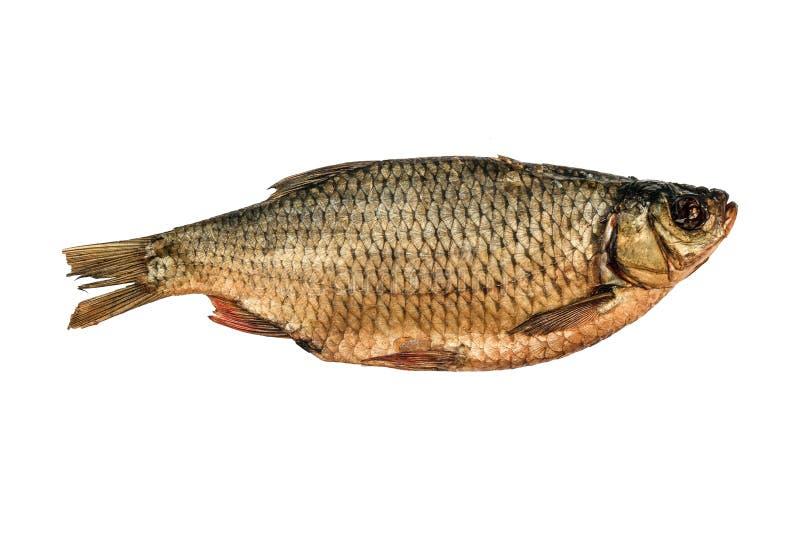 Droge gezouten rudd vissen die op een witte achtergrond worden ge?soleerd royalty-vrije stock fotografie