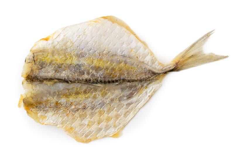 Droge gezouten vissen aan bier op een geïsoleerd wit, stock afbeelding