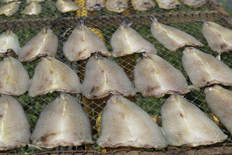 Droge gezouten vissen in de zon op bamboemand stock fotografie