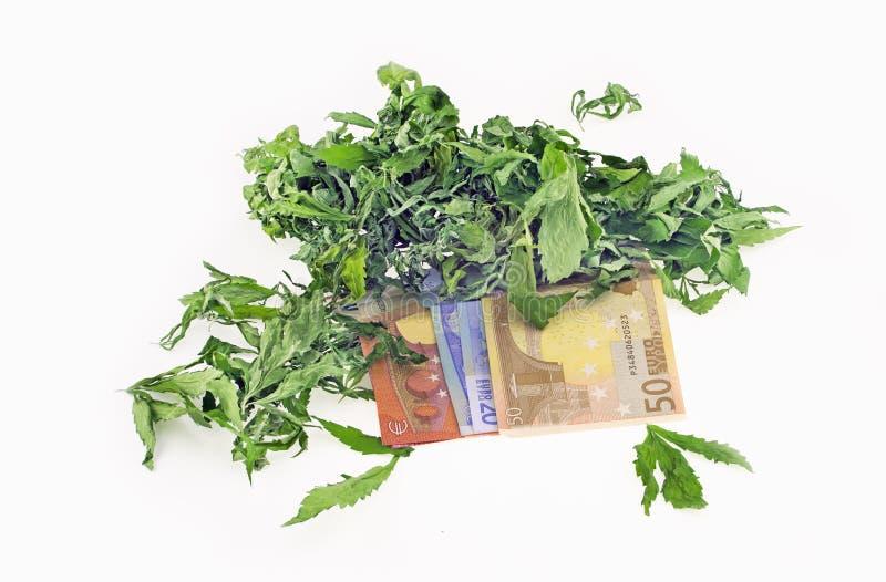 Droge hennepbladeren op euro bankbiljetten royalty-vrije stock afbeelding
