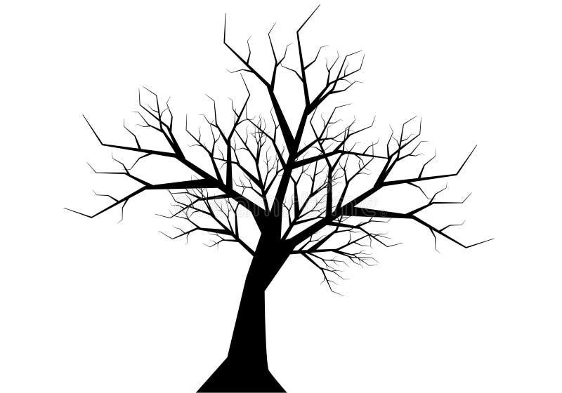 Droge het silhouetzwarte van de takjeboom op witte vector als achtergrond royalty-vrije illustratie