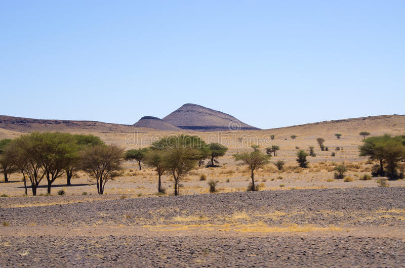 Droge heuvels van Marokko stock foto's