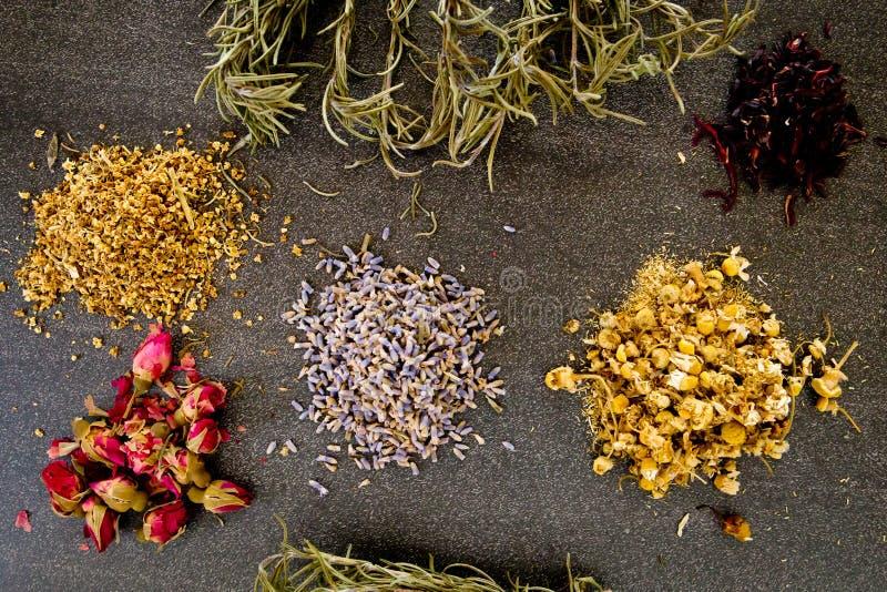 Droge Kruiden op grijze/grijze leiachtergrond - de kamille, hibiscus, valkruid, oudere bloem, nam knop en rozemarijn toe stock fotografie