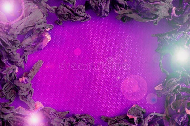 Droge kruidenomlijsting op roze gestippelde stoffenachtergrond met lichte gloedflitsen Ronde op te nemen en te ontwerpen exemplaa stock foto's