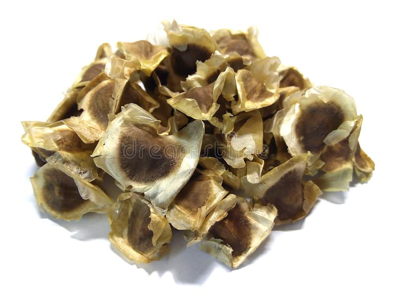 Droge moringa zaden op witte achtergrond stock fotografie