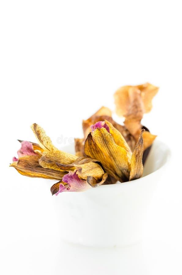 Droge orchideebloemen in witte kom stock afbeeldingen