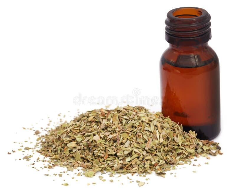 Droge orego en etherische olie stock afbeelding