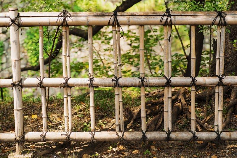 Droge oude de textuurachtergrond van de bamboemuur Natuurlijke omheining Omheining van bamboestelen royalty-vrije stock afbeelding