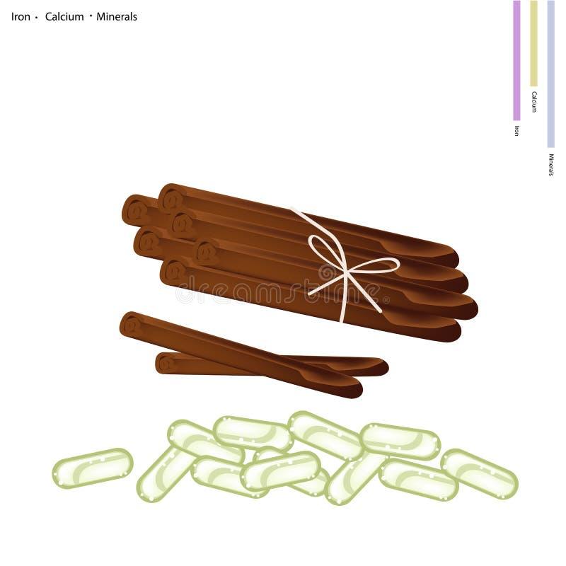 Droge Pijpjes kaneel met Mineralen en Pil stock illustratie