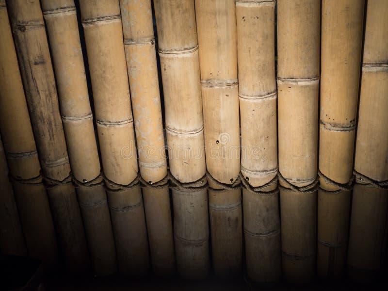 Droge rechte de muurvloer van de bamboetextuur precies verticaal ligh stock afbeeldingen