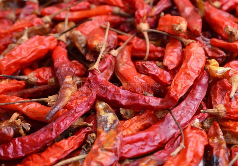 Droge rode Spaanse pepers als geweven voedselachtergrond royalty-vrije stock foto's