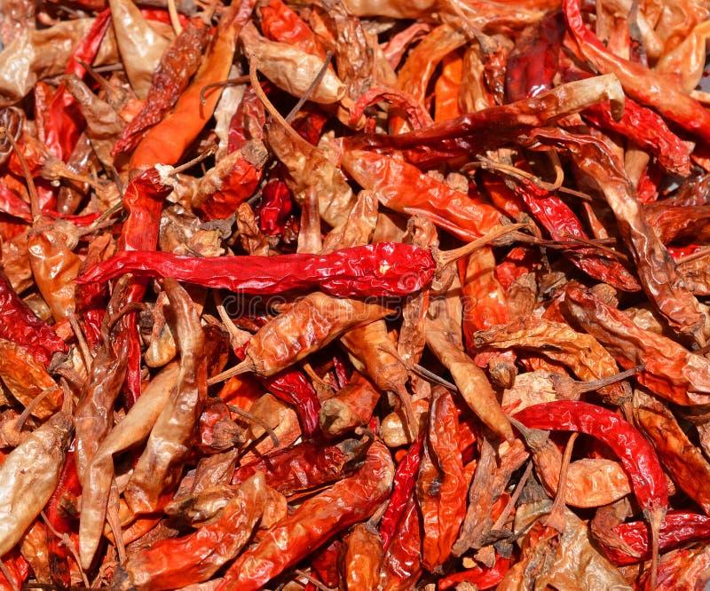 Droge rode Spaanse pepers als geweven voedselachtergrond stock afbeelding