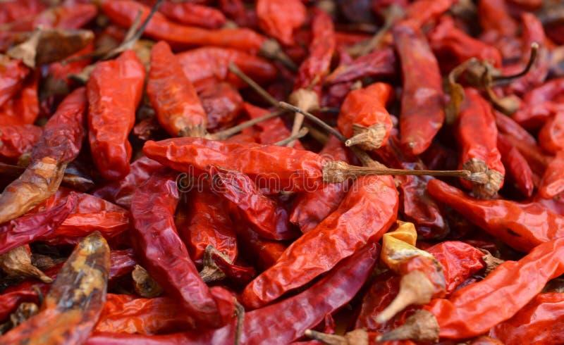Droge rode Spaanse pepers als geweven voedselachtergrond stock foto