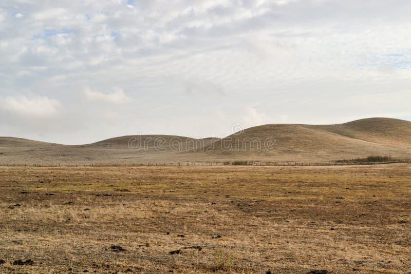 Droge rollende heuvels van Californië stock fotografie