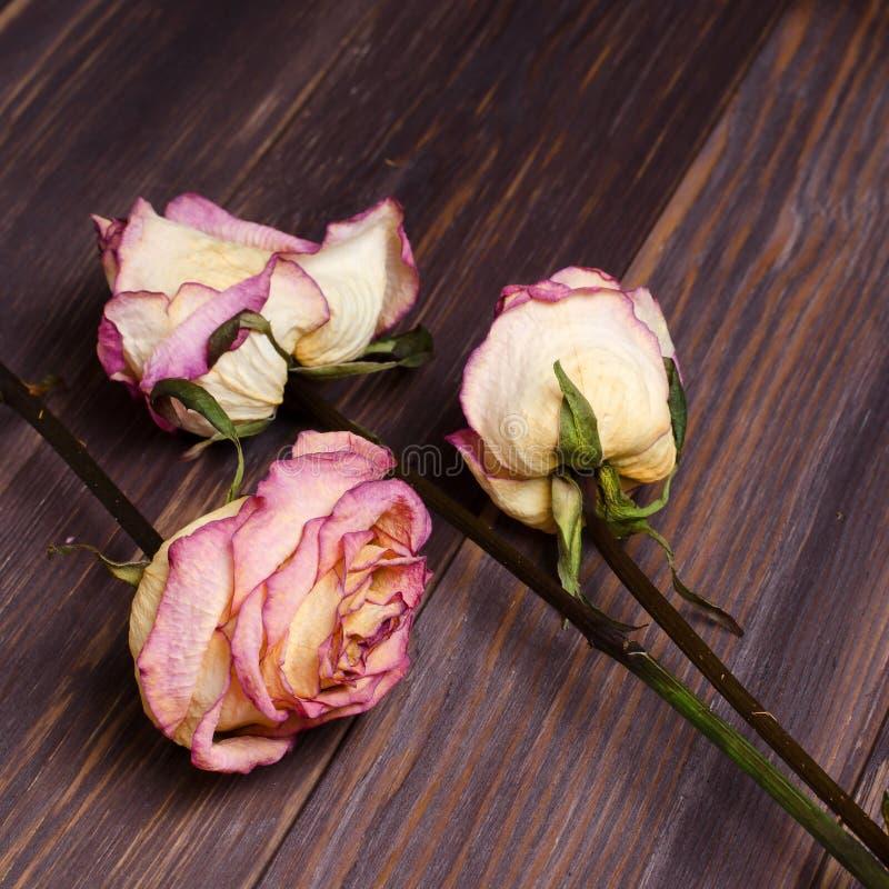 Droge rozen op houten achtergrond stock afbeelding