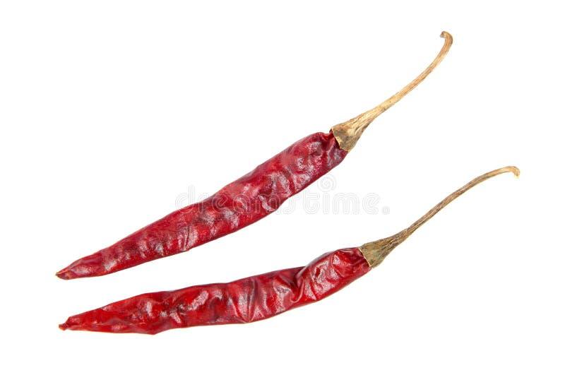Droge Spaanse peperpeper op witte achtergrond Droge ge?soleerde Spaanse pepers Droge Spaanse peper royalty-vrije stock foto's