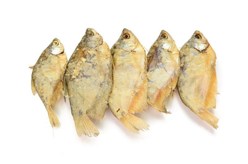 Droge visfiletsvleespennen op een witte achtergrond royalty-vrije stock foto