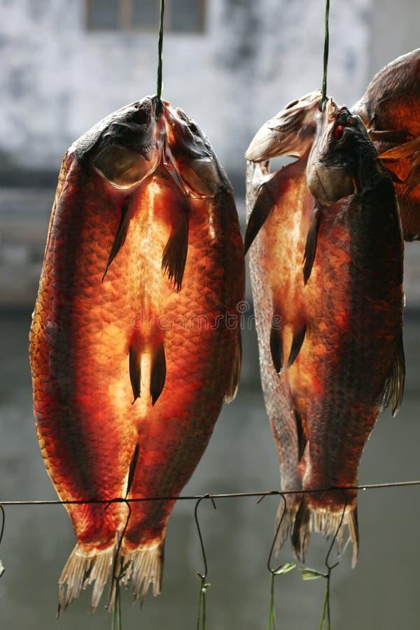 Droge vissen royalty-vrije stock afbeelding