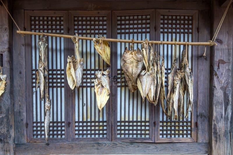 Droge vissen bij Dae Jang Geum Park of Koreaans Historisch Drama in Korea stock fotografie